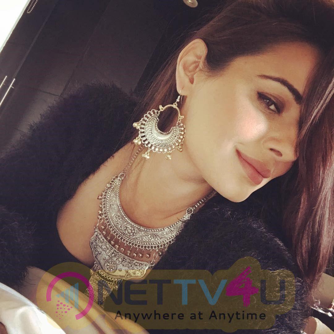 Actress Mandy Takhar Mesmeric Stills