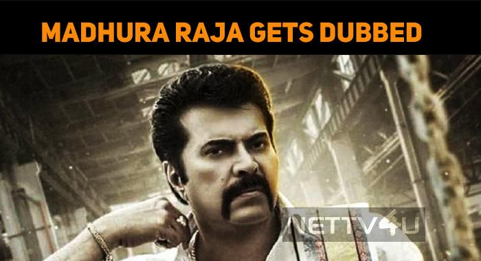 Mammootty's Madhura Raja To Get A Telugu Versio..