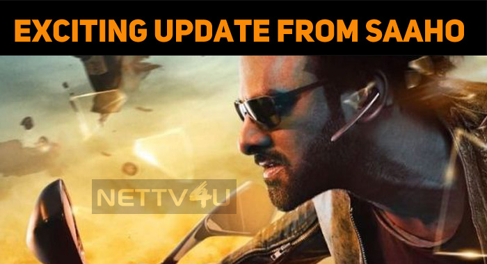 Exciting Update From Saaho Team!