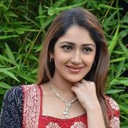 Sayesha Saigal Hindi Actress
