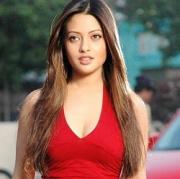 Riya Sen Hindi Actress