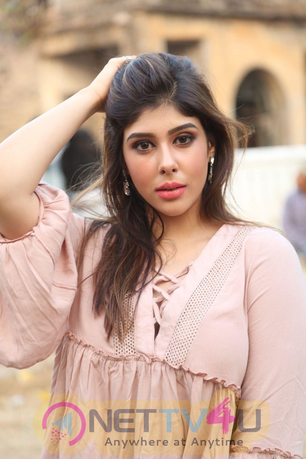 Actress Aditi Singh Cute Pics At Nenu Kidnap Iyanu Movie Press Meet  Telugu Gallery