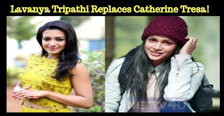 Lavanya Tripathi Replaces Catherine Tresa!