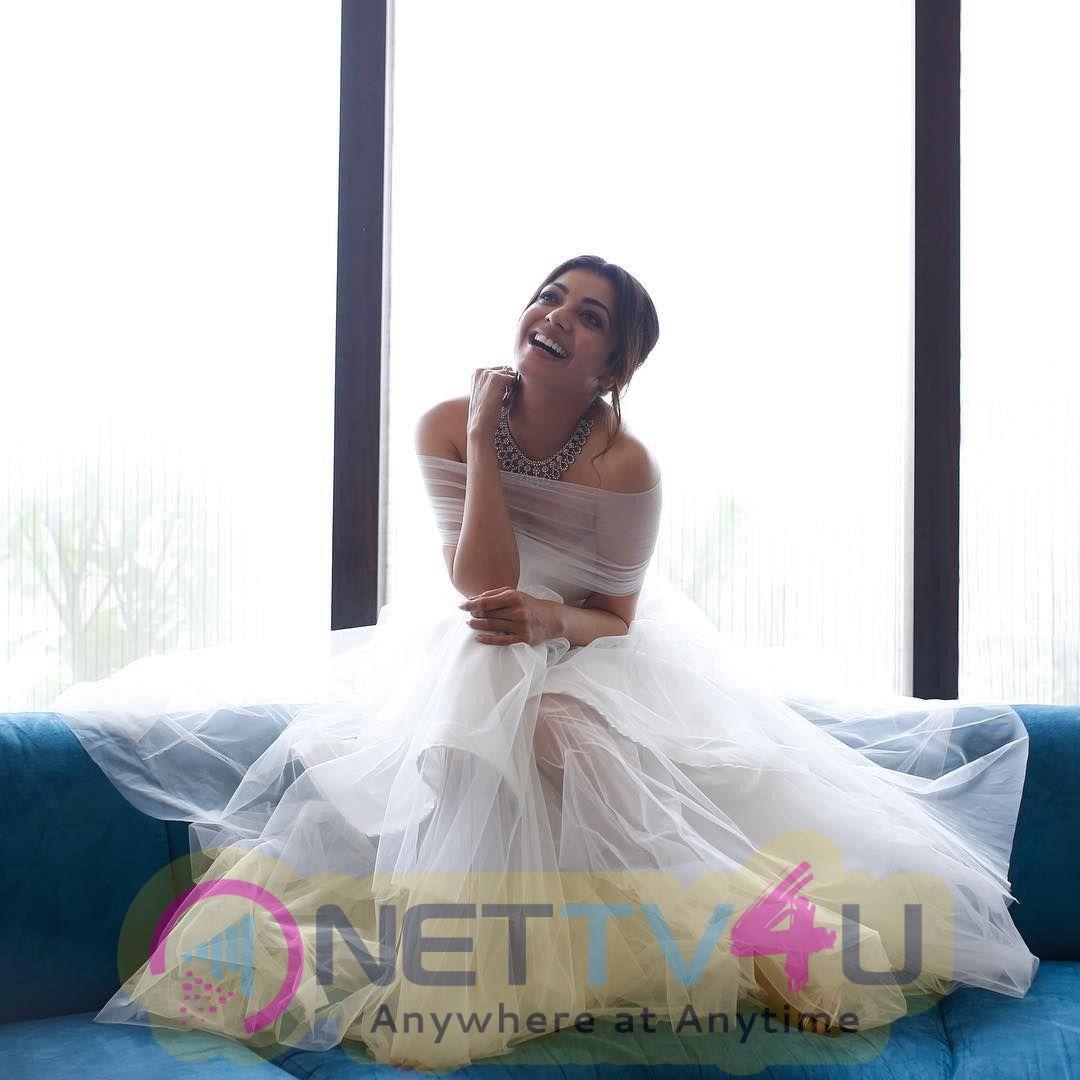 Actress Kajal Agarwal Gorgeous Stills