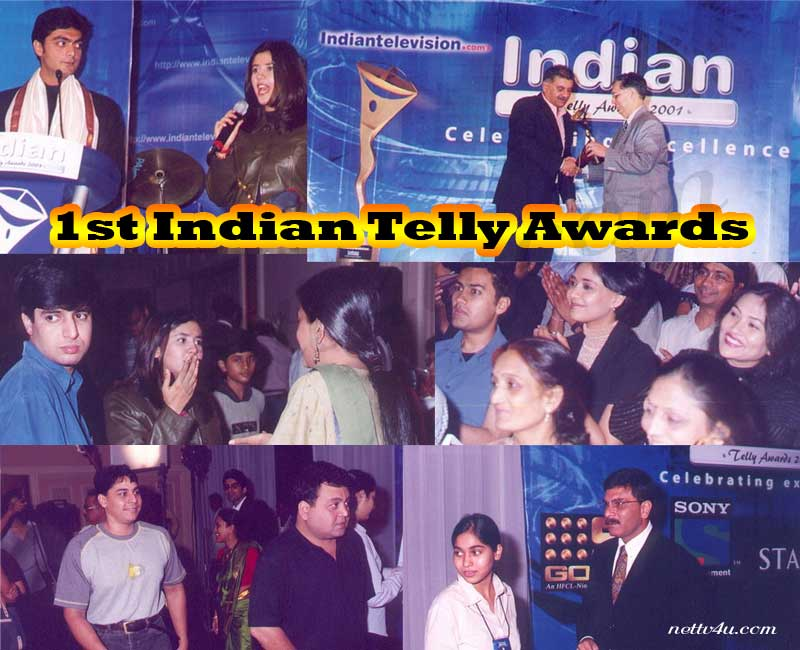 1st Indian Telly Awards