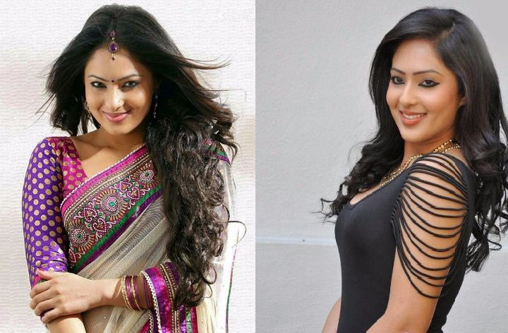 Nikesha Patel Excels In All Languages!