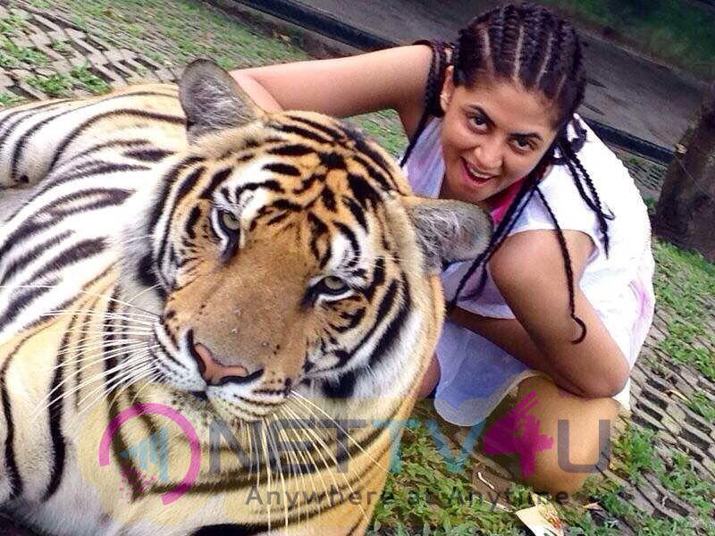 Actress Kavita Kaushik Images