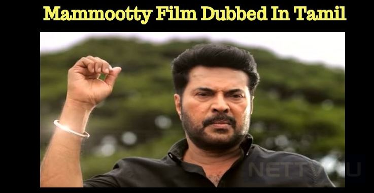 Mammootty Movie To Get The Screens In Tamilnadu!