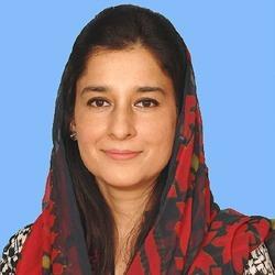 Ayesha Raza Hindi Actress