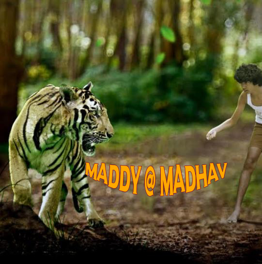 Maddy @ Madhav  Movie Review