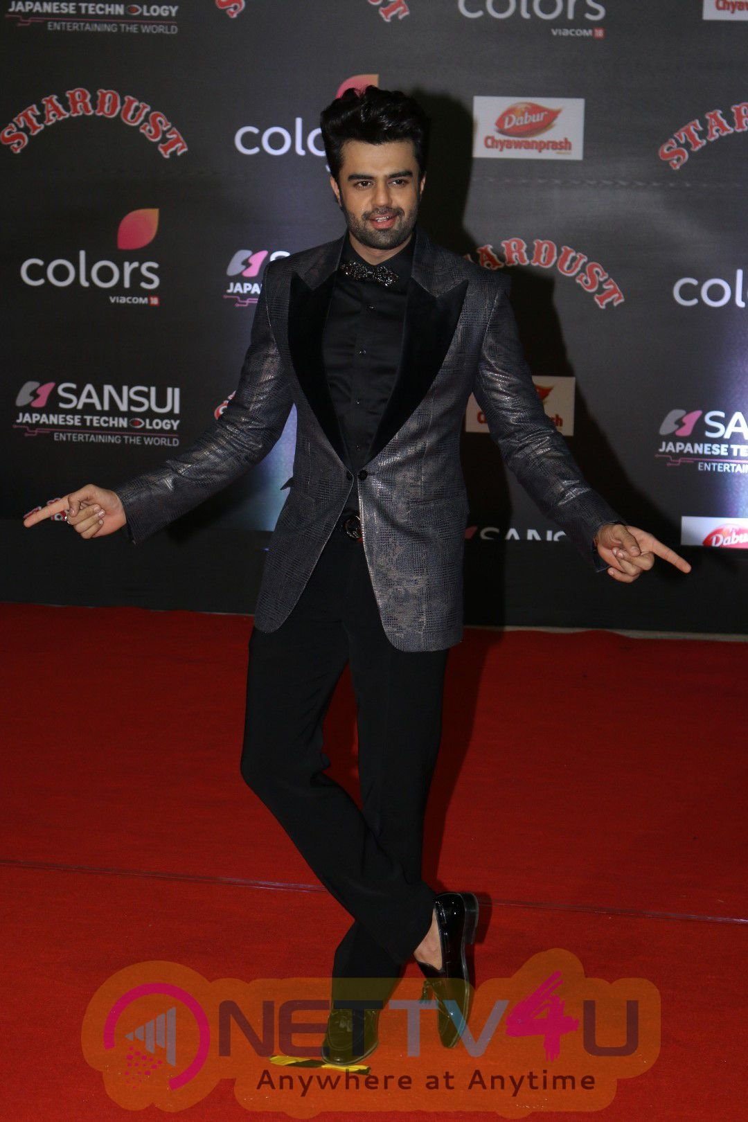 Red Carpet Of The Sansui Stardust Awards With Bollywood Celebs Photos