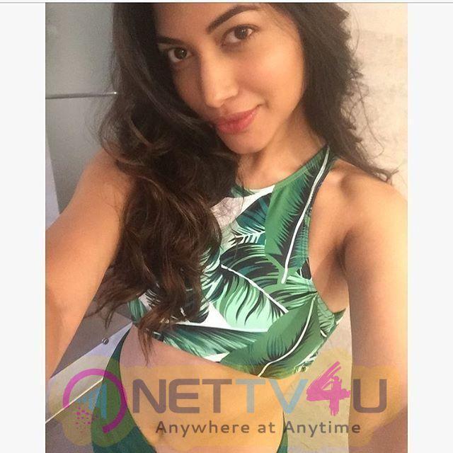Model Pallavi Das New Photos