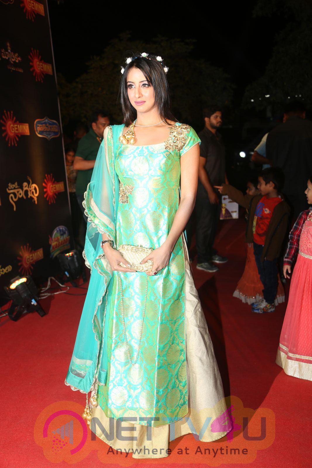Actress Sanjjanaa At Gemini TV Puraskaralu 2016 Telugu Gallery