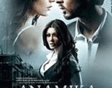 Anamika Movie Review Hindi Movie Review