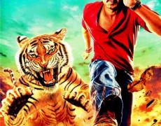 Himmatwala Movie Review Hindi Movie Review