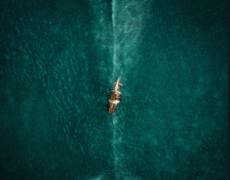 In The Heart Of The Sea Movie Review English Movie Review
