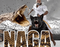 Naga Movie Review Telugu Movie Review