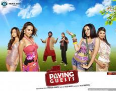 Paying Guests Movie Review Hindi
