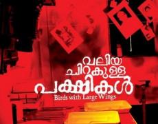 Valiya Chirakulla Pakshikal Review Malayalam Movie Review