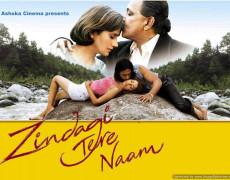 Zindagi Tere Naam Movie Review Hindi