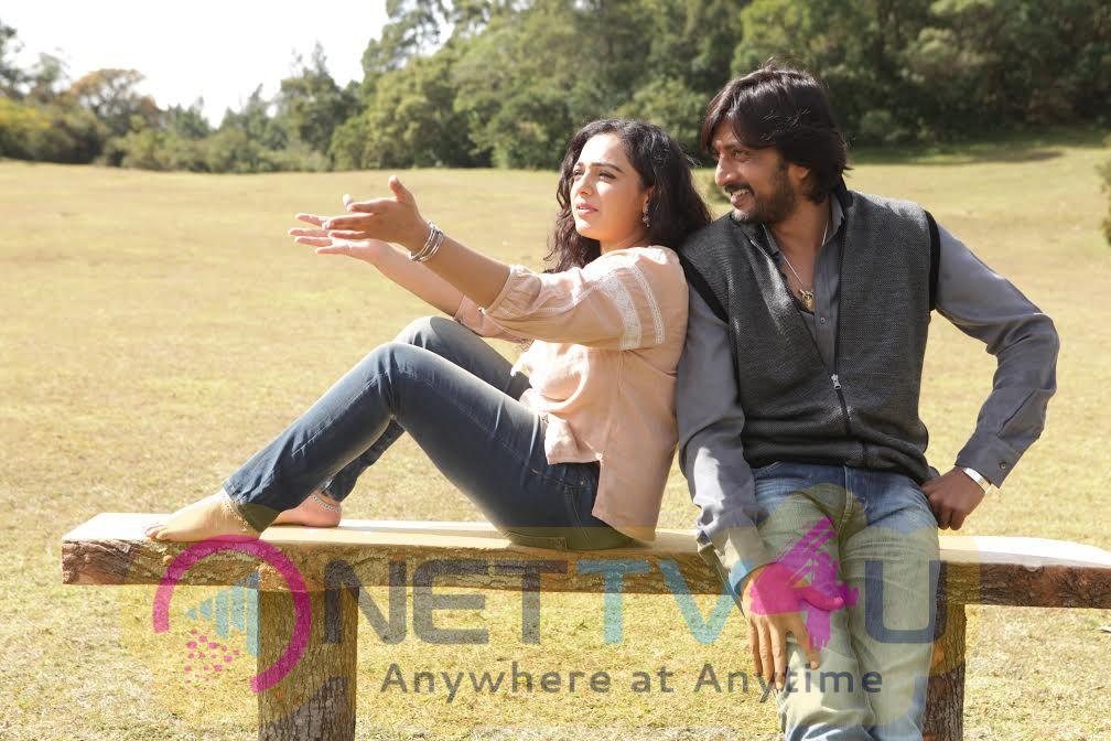 Kotikokkadu Telugu Movie Excellent Stills