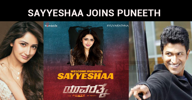 Sayesha Saigal Makes Her Debut In Kannada!