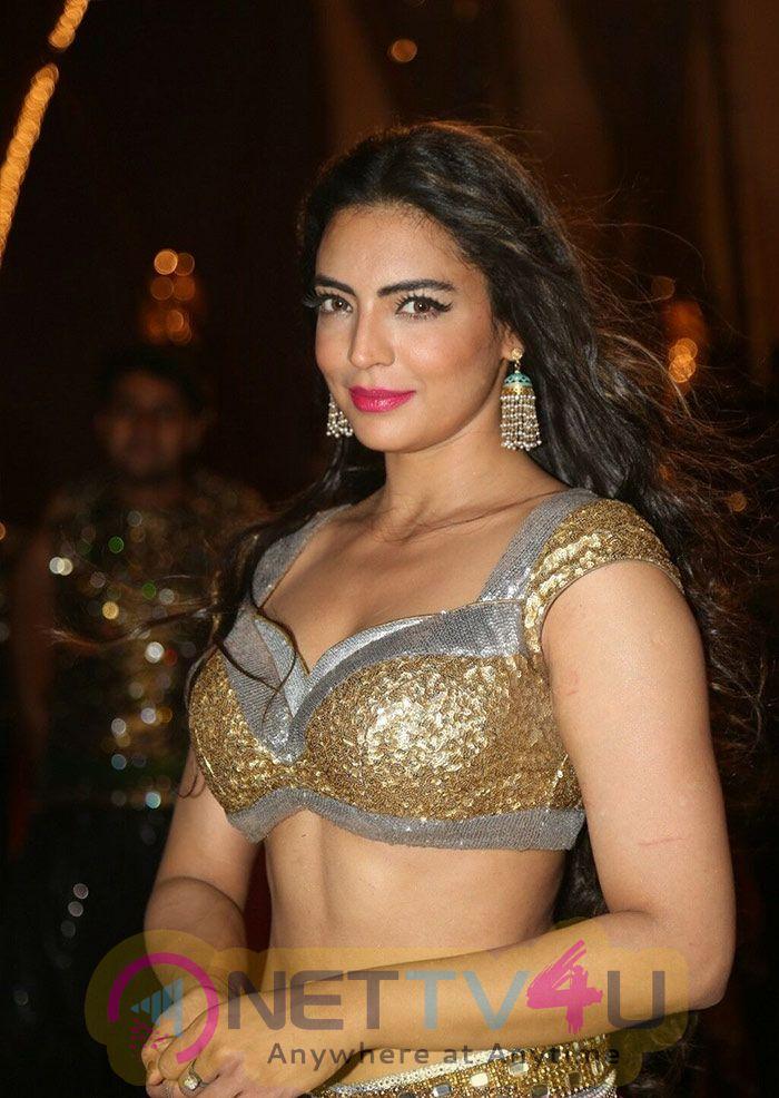Hindi Actress Shwetha Bharadwaj Hot Stills