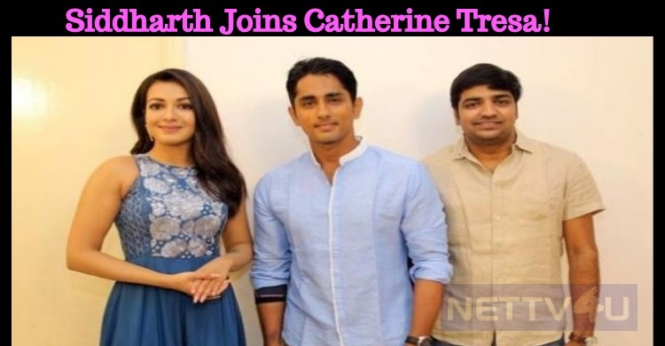 Siddharth Joins Catherine Tresa!