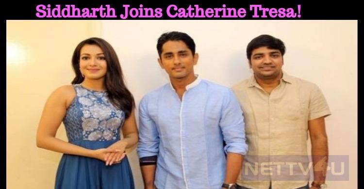 Siddharth Joins Catherine Tresa!