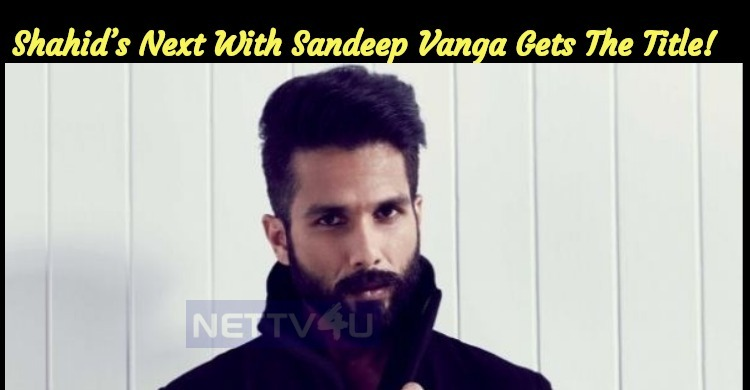Shahid's Next With Sandeep Vanga Gets The Title!