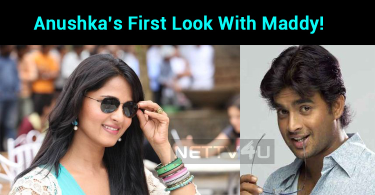 Anushka's First Look Update In Her Next With Maddy!