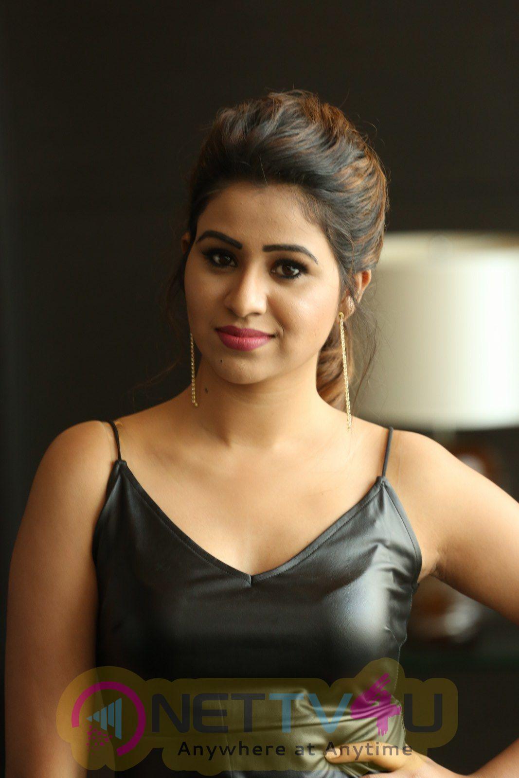 MANALI  MLA Success Meet Telugu Gallery
