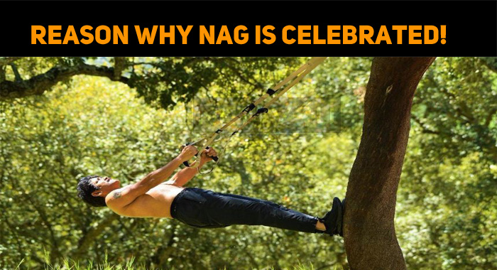 Yet Another Set Of Images Prove Why Nag Is Celebrated!