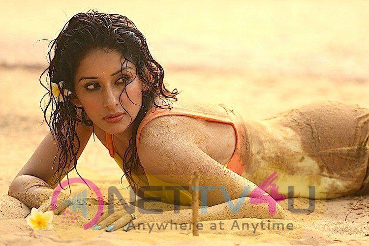 Actress Sameksha Glamorous Stills