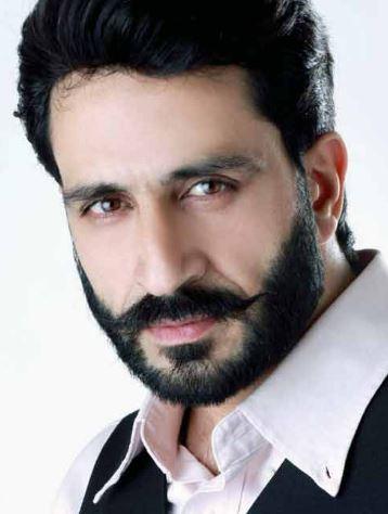 Mir Sarwar Hindi Actor
