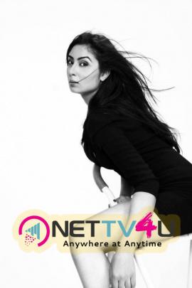 Actress Bhanu Sri Mehra Photo Gallery