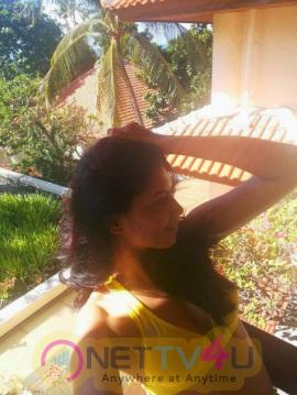 Tv Actress Kavita Kaushik Hot Photo Shoot Latest Stills Telugu Gallery
