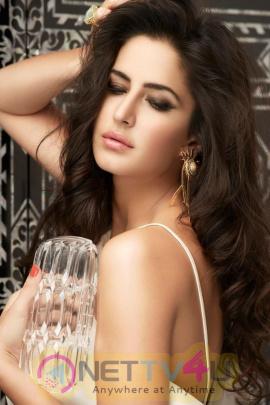 Actress Katrina Kaif Beautiful Spicy Photos Telugu Gallery