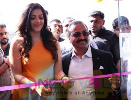 Actress Mehrene Kaur Pirzada Launch B New Mobile Store In Adoni Stills Telugu Gallery