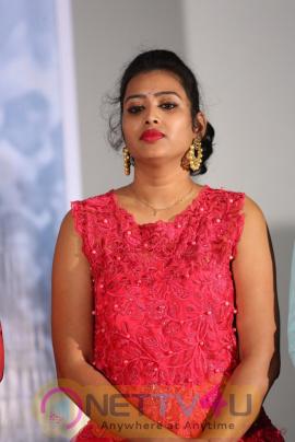 IPC Section Bharya Bandhu Movie Audio Lunch Telugu Gallery
