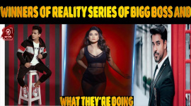 Top 10 Winners Of Reality Series Of Bigg Boss And What They're Doing