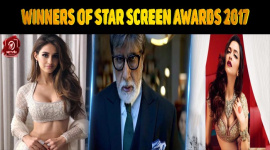Top 10 Winners Of Star Screen Awards 2017