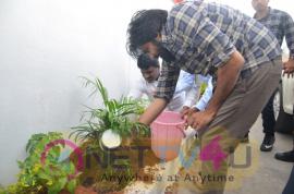 Megastar Pawan Kalyan Saplings Planted Pics Telugu Gallery