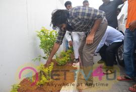 Megastar Pawan Kalyan Saplings Planted Pics