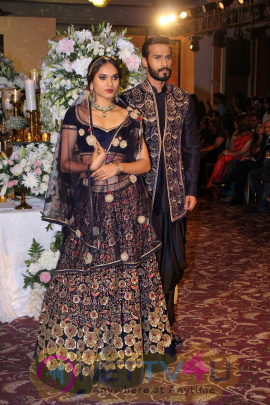 Grand Launch Of Taj Wedding Studio With Fashion Show Stills Hindi Gallery