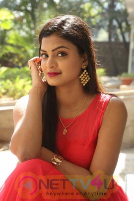 Actress Anusha Stunning Stills At Dyavudaa Movie Teaser Launch