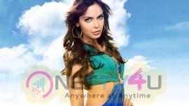 Actress Shazahn Padamsee Attractive Photos Hindi Gallery