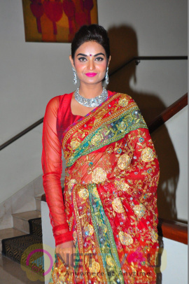 Model Sharon Fernandes Good Looking Images Telugu Gallery