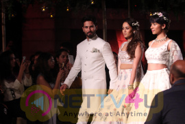 Shahid Kapoor & Mira Rajput Showstopper For Designer Anita Dongre R Elan At Lakme Fashion Week Pics Hindi Gallery