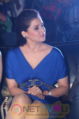 Rogue Teaser Launch And Mannara Chopra, Angela Stunning Photos Telugu Gallery